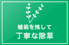 植栽を残して 丁寧な除草